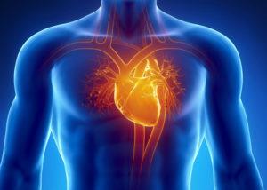 Давит сердечная мышца фото