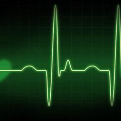 сердце медленно бьется